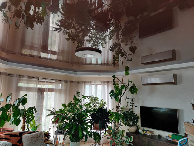 Глянцевый бордовый натяжной потолок в зале Одесса